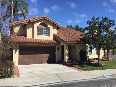 Laguna Niguel Single Family Home For Sale: 30042 Whitecap