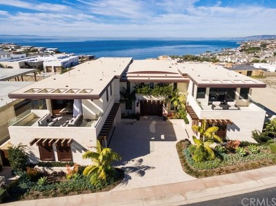 Dana Point Single Family Home For Sale: 25 Shoreline Drive