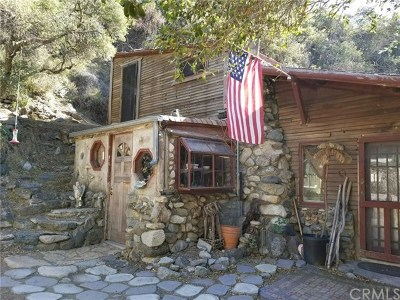 Trabuco Canyon Single Family Home For Sale: 2 Holy Jim