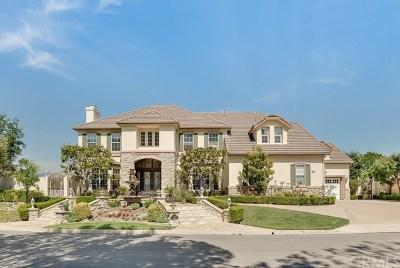 Coto de Caza Single Family Home For Sale: 12 Panorama