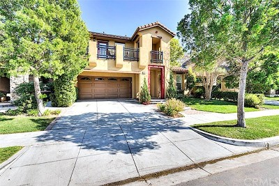 Ladera Ranch Single Family Home For Sale: 20 St Just Avenue