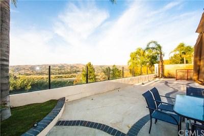 Anaheim Hills Rental For Rent: 8865 E Foxhollow Drive