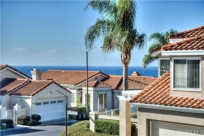 Dana Point Single Family Home For Sale: 33635 Sundown Court