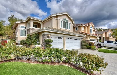 Rancho Santa Margarita Single Family Home For Sale: 51 Foxtail Lane