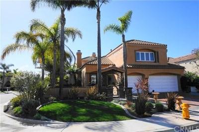 Huntington Beach Rental For Rent: 6276 Morningside Drive