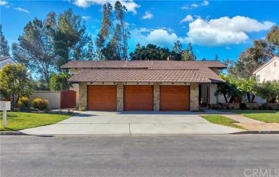 North Tustin Single Family Home For Sale: 10775 Equestrian Drive