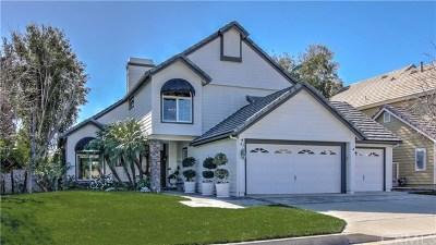 Coto de Caza Single Family Home For Sale: 41 Lexington Way