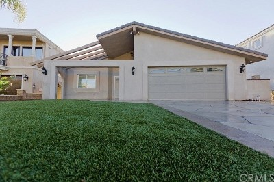 Canyon Lake Single Family Home For Sale: 22471 Whirlaway Court