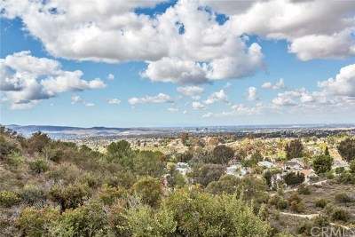 Mission Viejo CA Single Family Home For Sale: $1,097,500
