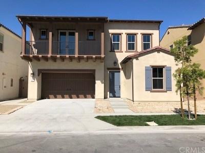 Irvine Single Family Home For Sale: 217 Geyser