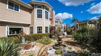 San Juan Capistrano Single Family Home For Sale: 31302 Via Las Palmas