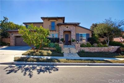 San Juan Capistrano Single Family Home For Sale: 29300 Paseo Palmar
