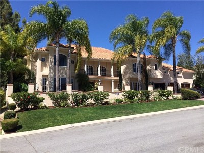 Laguna Hills Single Family Home For Sale: 25491 Spotted Pony Lane