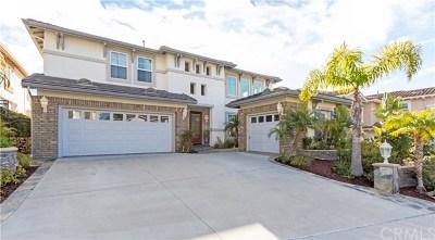 Laguna Niguel Single Family Home For Sale: 28932 Drakes Bay