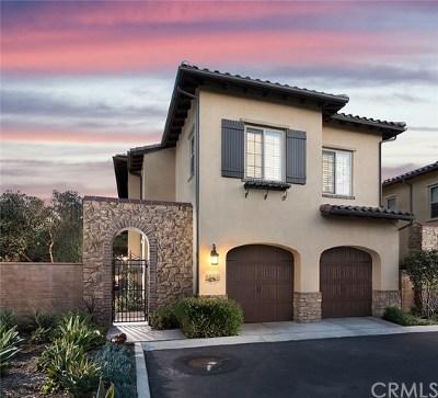 San Juan Capistrano Single Family Home For Sale: 28291 Camino Del Rio