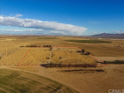 Barstow Residential Lots & Land For Sale: In Daggett Off Power Line Road