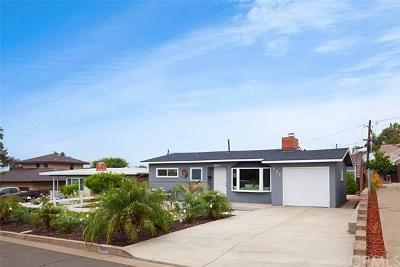 San Clemente Single Family Home For Sale: 222 Avenida Princesa
