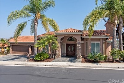 San Clemente Single Family Home For Sale: 6 Tesoro