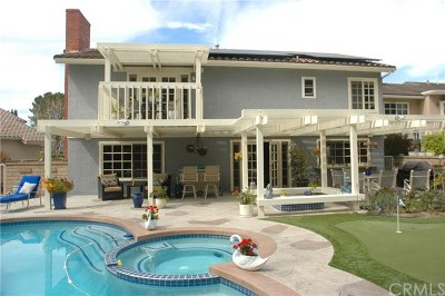 Mission Viejo Single Family Home For Sale: 22622 Demasia