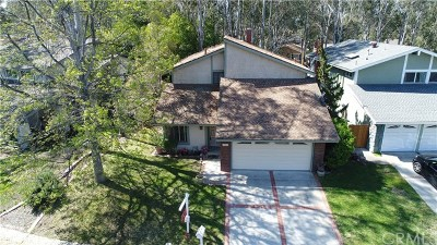 Lake Forest Single Family Home For Sale: 22412 Woodgrove Road