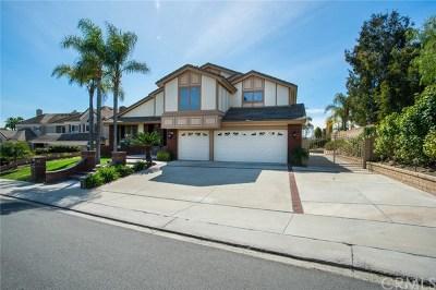 Laguna Hills Single Family Home For Sale: 27751 Hidden Trail Road