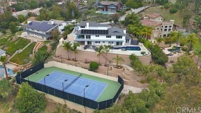 Orange Single Family Home For Sale: 1658 N Hunters Way