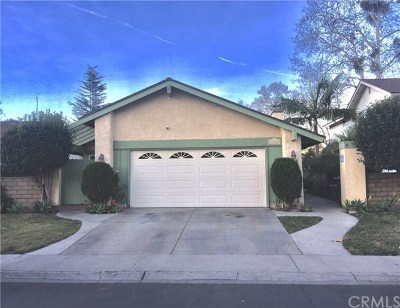 San Juan Capistrano Single Family Home Active Under Contract: 26486 Park Circle