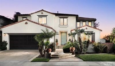 San Juan Capistrano Single Family Home For Sale: 31211 Via Del Verde