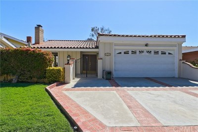 San Clemente Single Family Home For Sale: 606 Calle Vicente