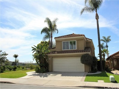 San Clemente Single Family Home For Sale: 54 Via Zaragoza