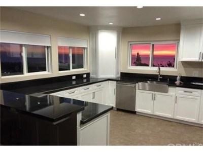 San Clemente Single Family Home For Sale: 1305 Via Avila