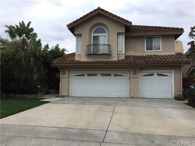 San Clemente Rental For Rent: 1804 Via Sage