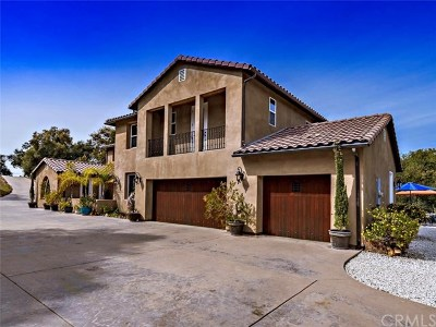 Lake Elsinore Single Family Home For Sale: 34782 El Dorado Street