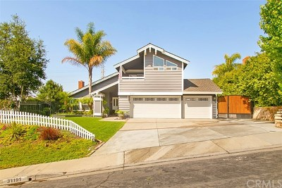 San Juan Capistrano Single Family Home For Sale: 31191 Casa Grande Drive