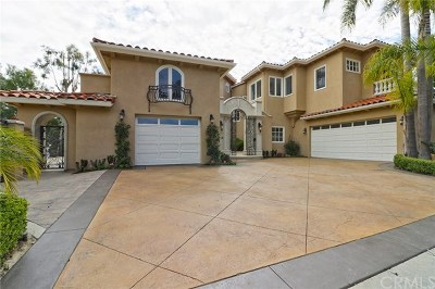 Laguna Niguel CA Single Family Home For Sale: $3,150,000