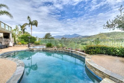 Rancho Santa Margarita Single Family Home For Sale: 32 Barneburg