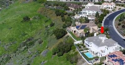 Laguna Niguel Single Family Home For Sale: 45 Poppy Hills Road