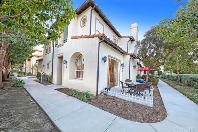 San Clemente Condo/Townhouse For Sale: 411 Calle Campanero