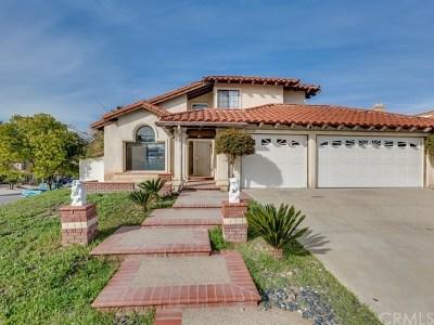 Murrieta Single Family Home For Sale: 25525 Brownestone Way