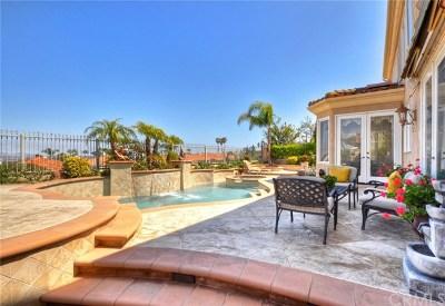Laguna Niguel Single Family Home For Sale: 26 Coronado Pointe