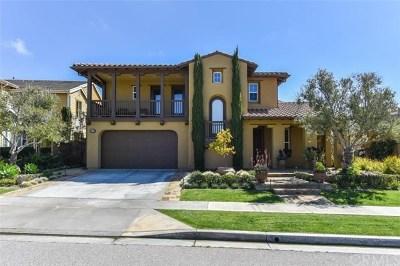 San Juan Capistrano Single Family Home For Sale: 33720 Paseo Del Puerto