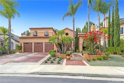 Mission Viejo Single Family Home For Sale: 22051 Oak Grove