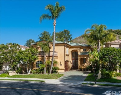 San Juan Capistrano Single Family Home For Sale: 30332 Golf Club Drive