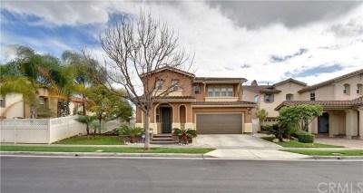 Fullerton Single Family Home For Sale: 2130 Root Street