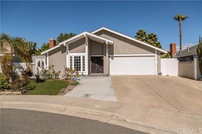 Laguna Hills Single Family Home For Sale: 25103 Southport Street