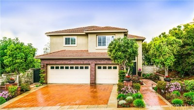 Irvine Single Family Home For Sale: 19 Charity