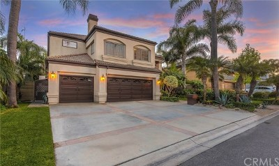Huntington Beach Single Family Home For Sale: 6592 Silverspur Lane