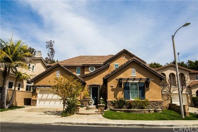 Aliso Viejo Single Family Home For Sale: 22 Crimson Canyon