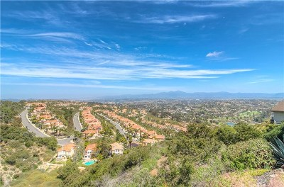 Laguna Niguel Single Family Home For Sale: 31102 Flying Cloud Drive