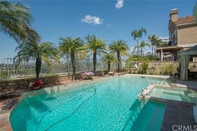 Mission Viejo Single Family Home For Sale: 19 Regalo Drive